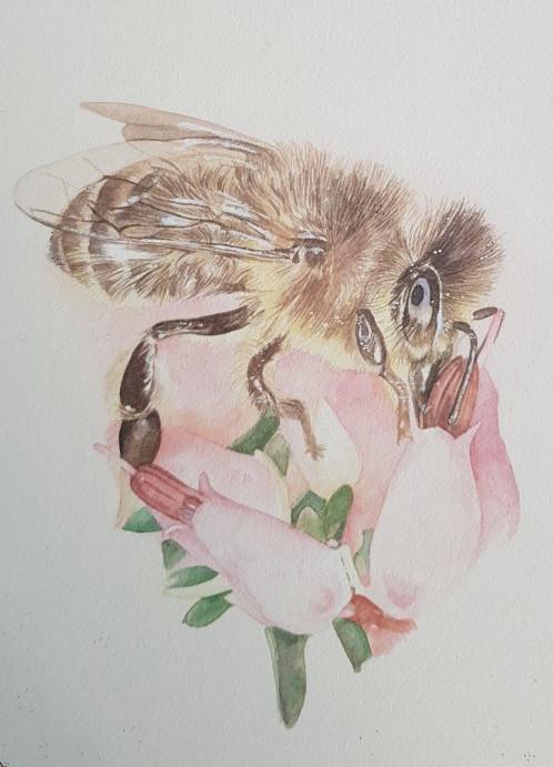 Hand written artwork bee